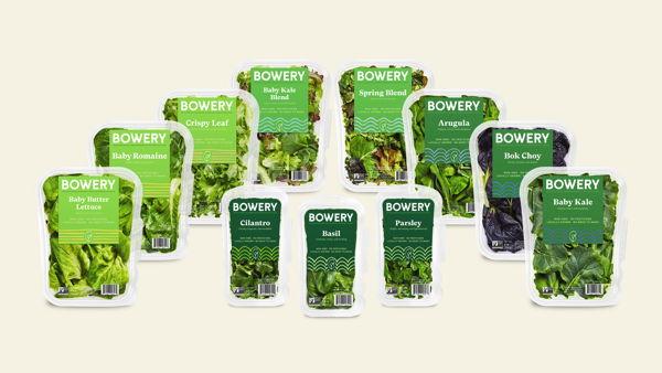 Bowery Farming Rebrand