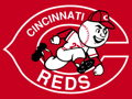 2 Terrace Line or 4 View Level tickets to a Cincinnati Reds Home Game