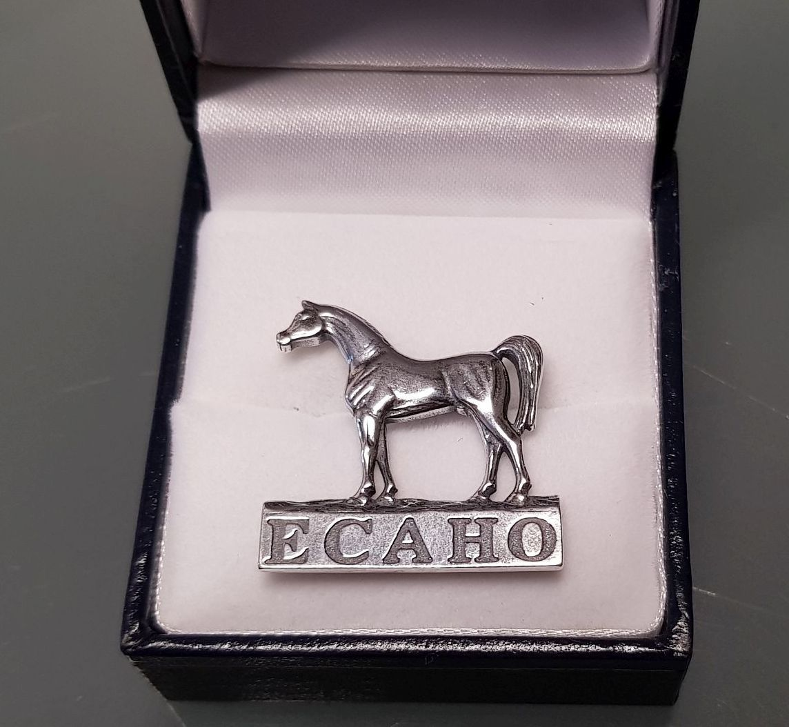 zz badge silver.jpg