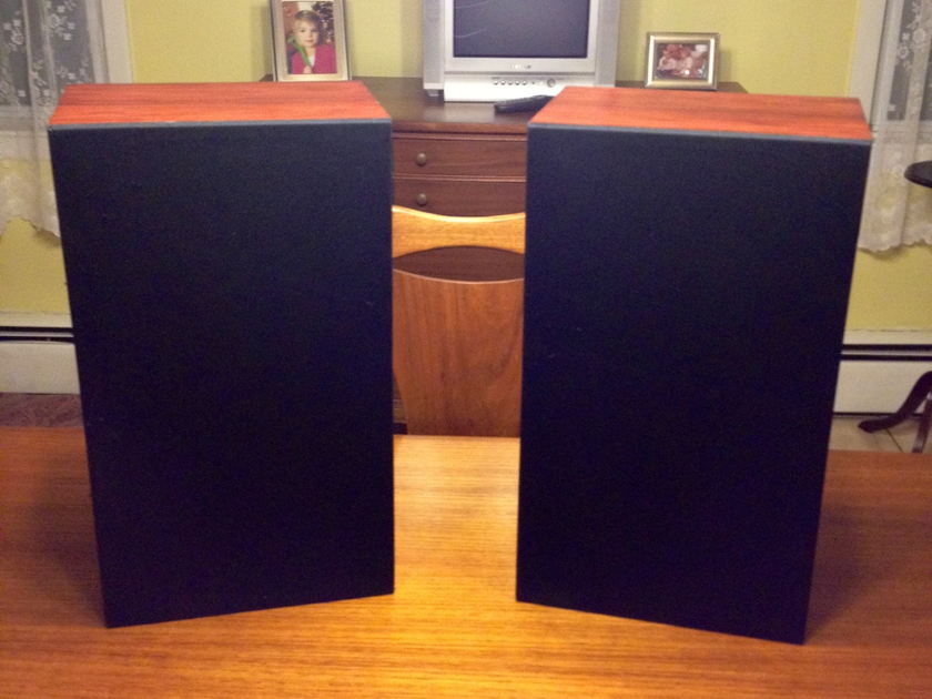 Audio Note AN K speakers rosewood made in UK