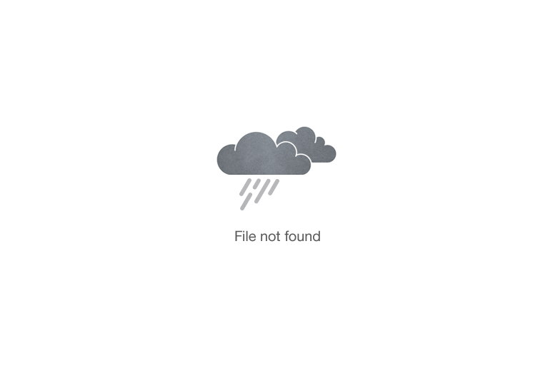 Maryline-Chevalin-Volley-Ball-Sponsorise-me-image-3
