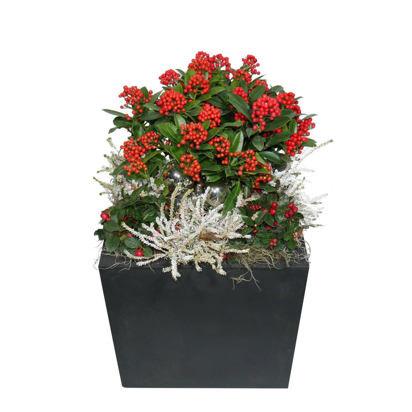 Pflanzgefäß Fiberstone Schwarz