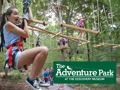 Four Climbing Sessions at The Adventure Park!