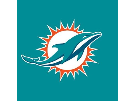 Miami Dolphins Family Four Pack
