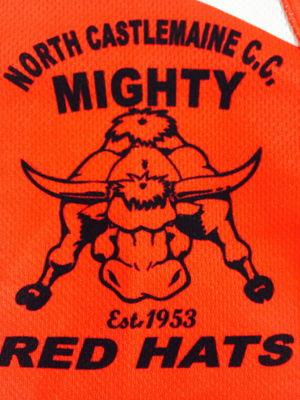 North Castlemaine Cricket Club Logo