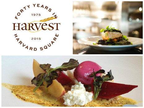 Dinner for Two at Harvest in Cambridge