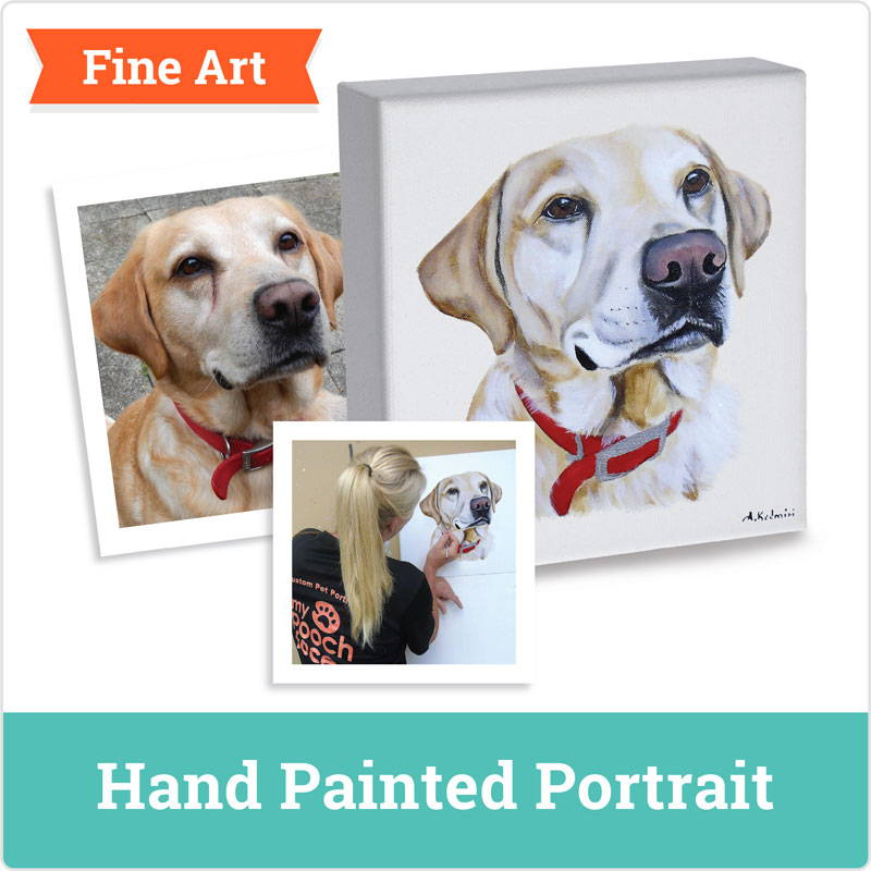 dog portrait - hand painted