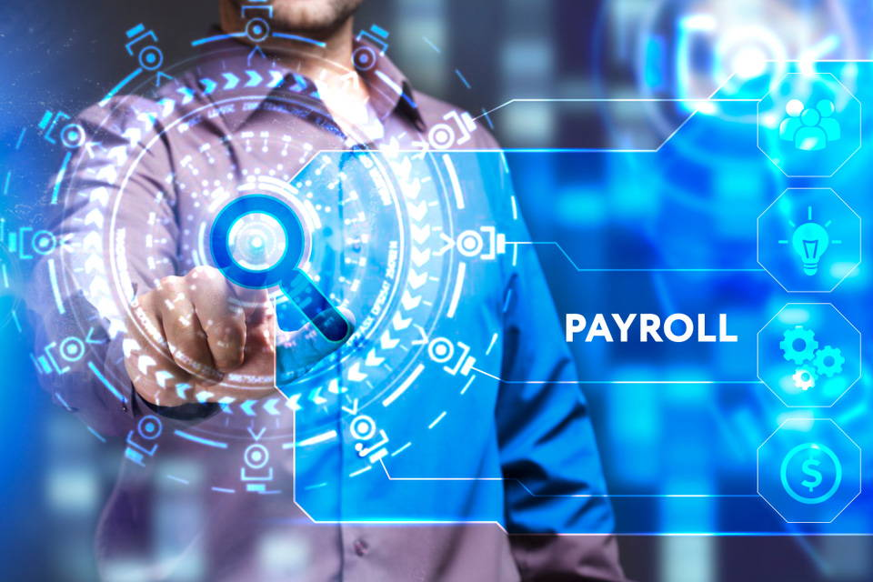 Payroll Software Business  For Sale