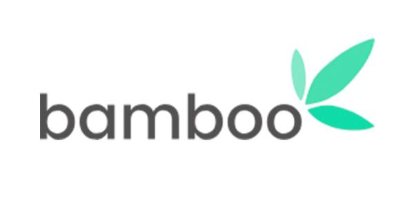 Bamboo invest logo