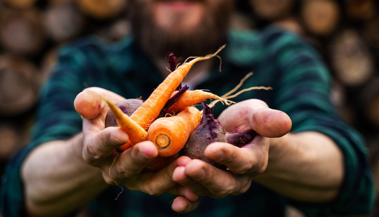 Demeter Karotten
