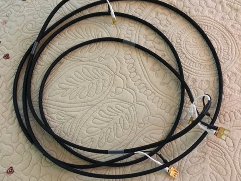 LessLoss Audio Devices Homage To Time  8' Speaker Cable with spades