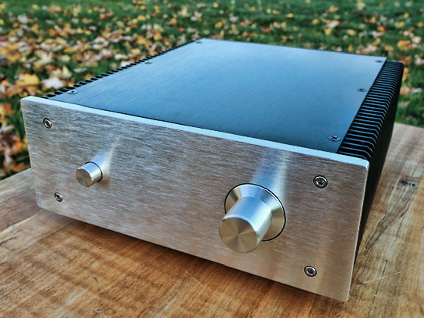 Fleawatt Audio TPA3116D2 Integrated Amp