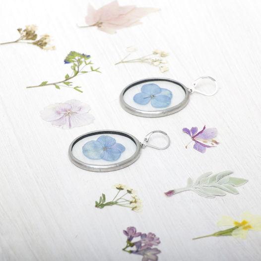 "Сережки с гербарием ""голубая гортензия"""
