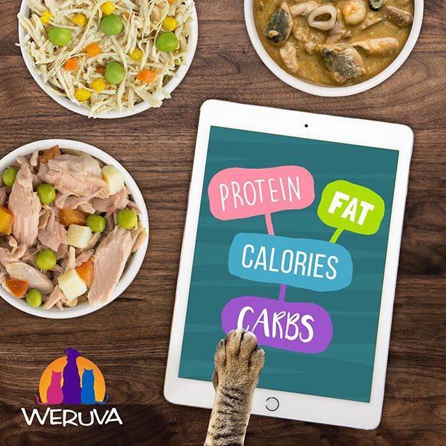 Weruva Dog & Cat Can Food