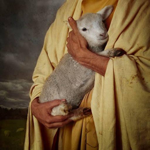 LDS art painting of Jesus Christ holding a lamb.