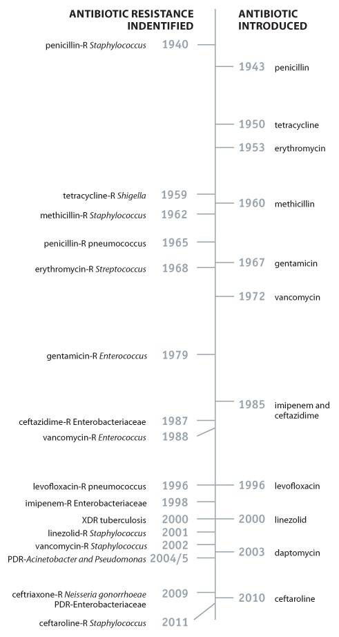 antibiotic-timeline