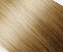 Butterscotch Blonde Hair Extensions
