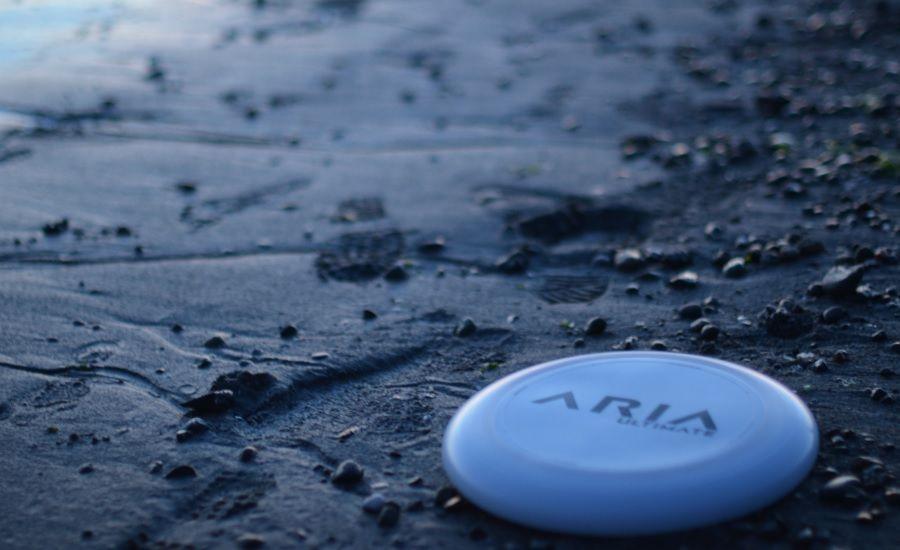 ARIA Ultimate testimonials