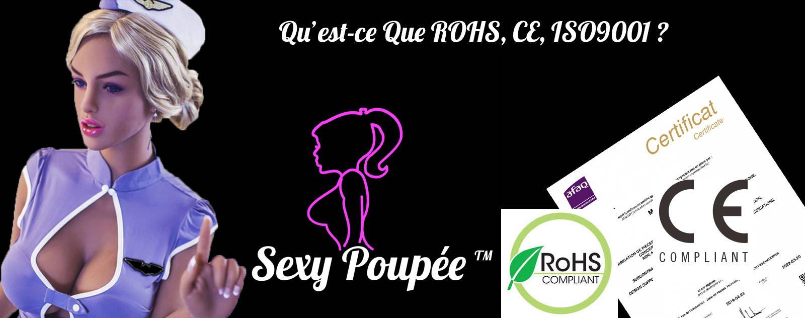 Blog c'est quoi le ROHS,CE,IS09001
