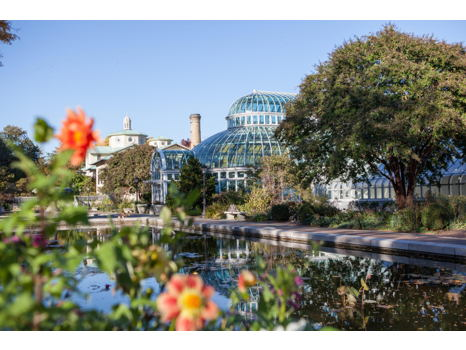 Four Complimentary Guest Passes to Brooklyn Botanic Garden