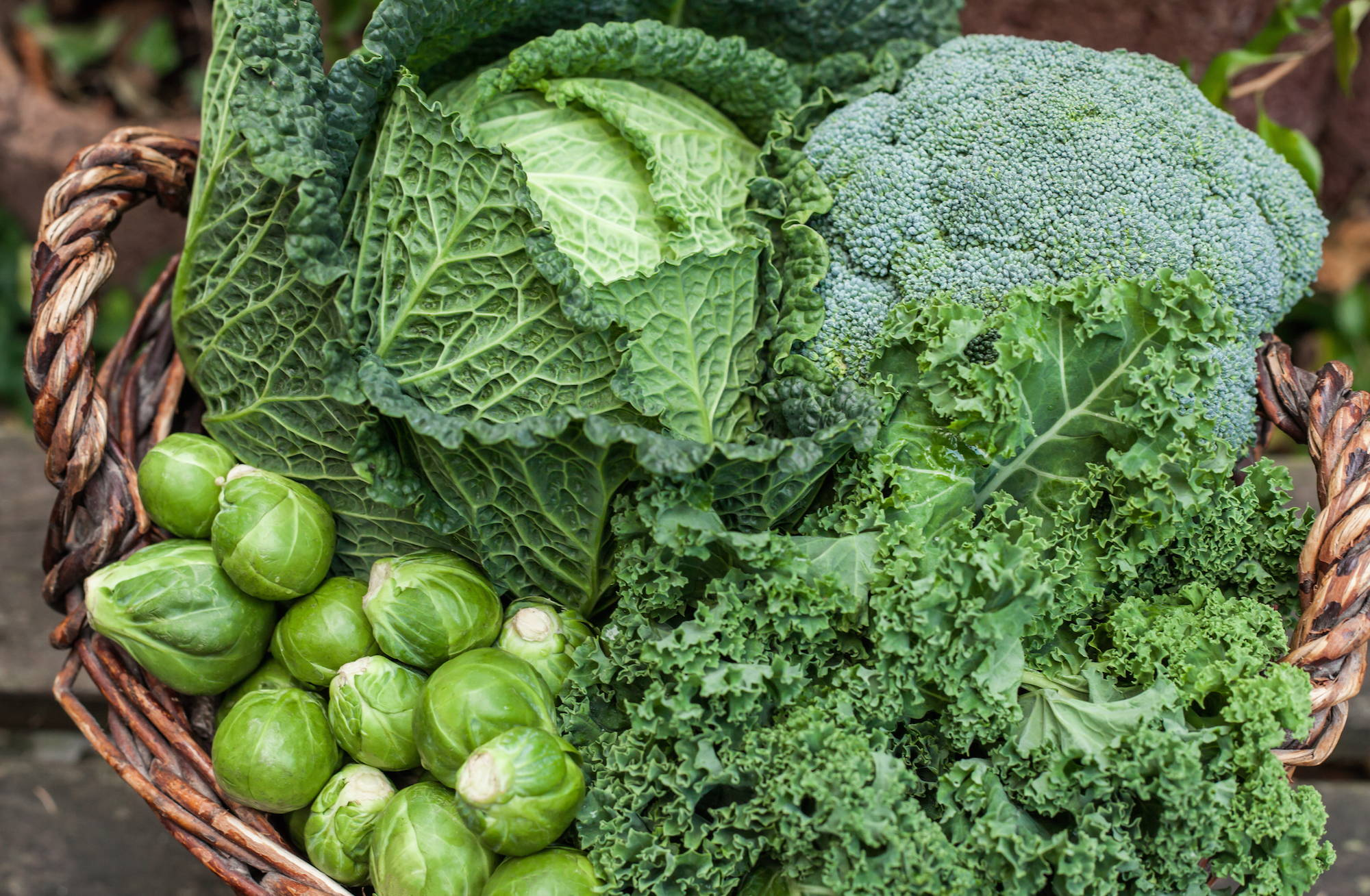 Cruciferous vegetables are a source of folate - an important nutrient for sperm and egg cells