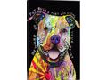 Beware of Pit Bulls - Canvas Print