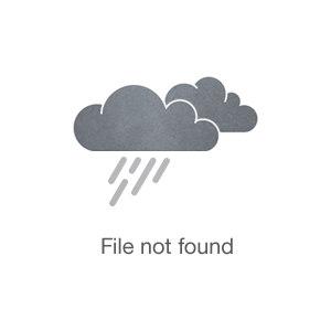Photo of Martin Allanson