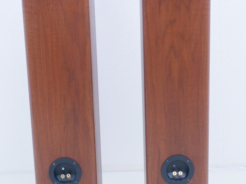 Ohm Acoustics Walsh 1000 Tall Speakers; Pair (9533)
