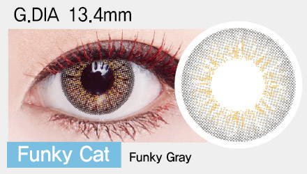 Holicat Funky Gray contact lens