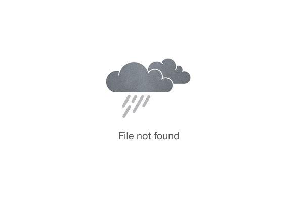 Gorongosa National Park Tour