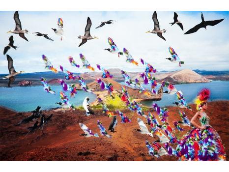 """Flight"" by Paul Robinson"