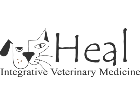 Healing Therapies for your Dog or Cat