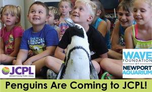 Image for Meet a Penguin from Newport Aquarium