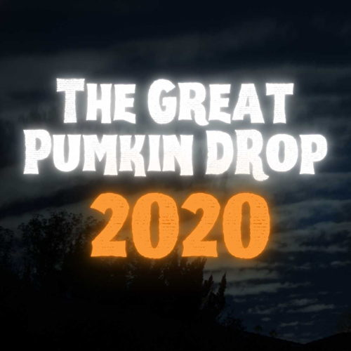 Picture of Not sure what you will do with your sad leftover Halloween Pumpkin? Why not drop it…from a zipline?!