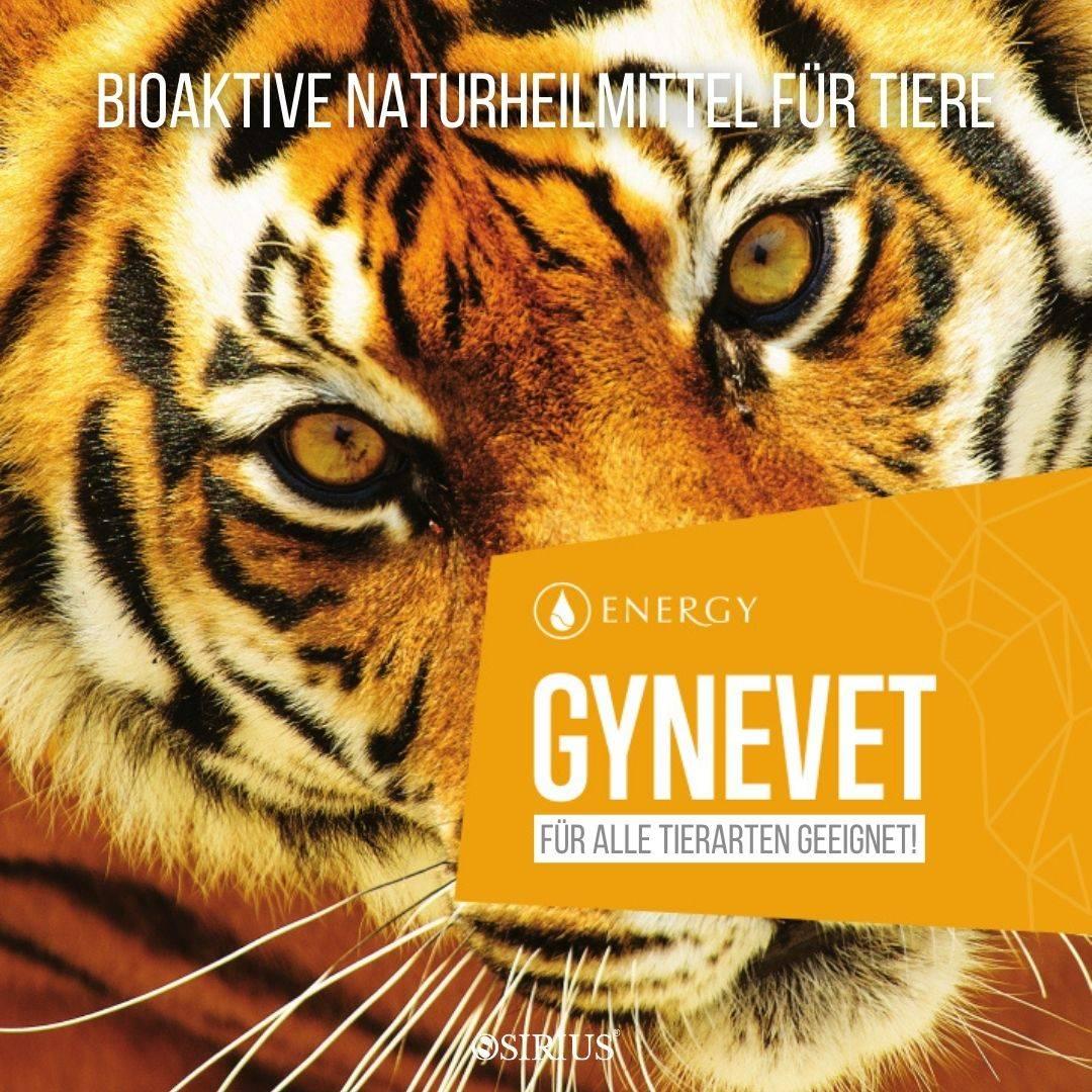 GYNEVET  Naturheilmittel für Tiere, Hunde, Katzen, Pferde und andere Tiere!