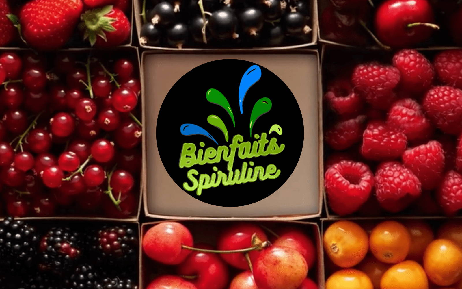 Bienfaits Spiruline avec fruits