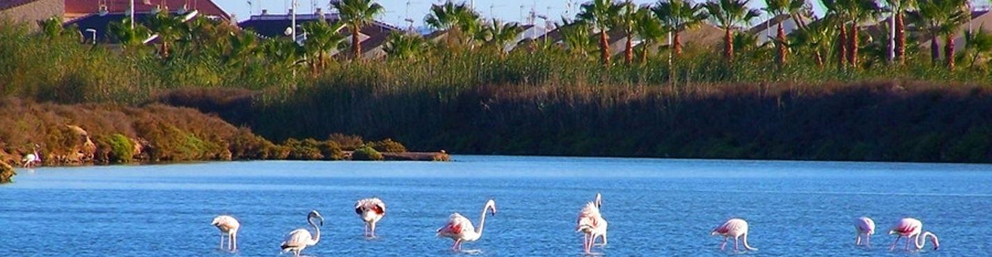 Солёные озера и заповедный пляж Средиземного моря