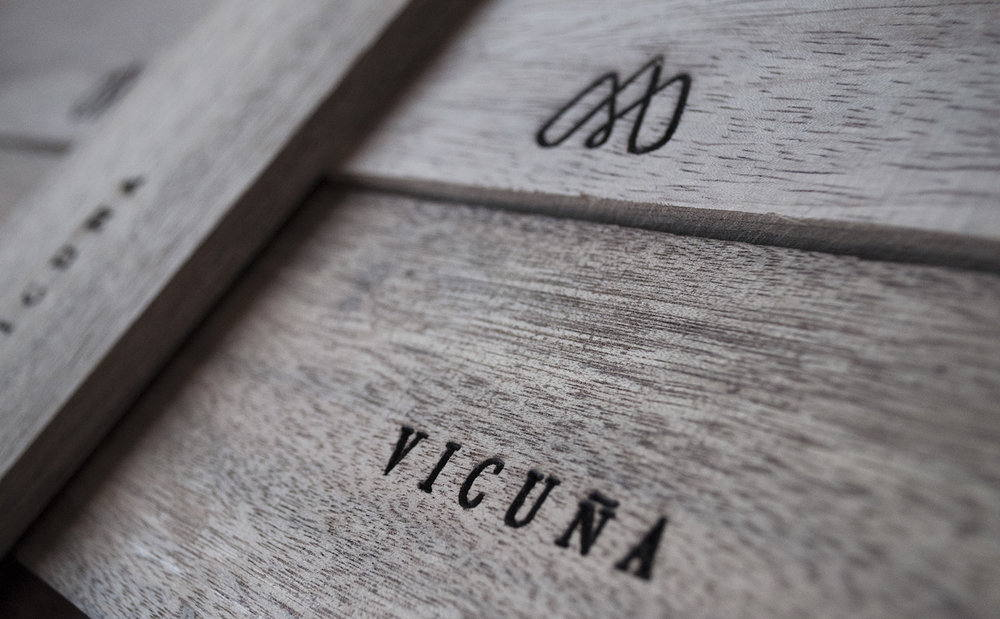 Vicuña_7.jpg