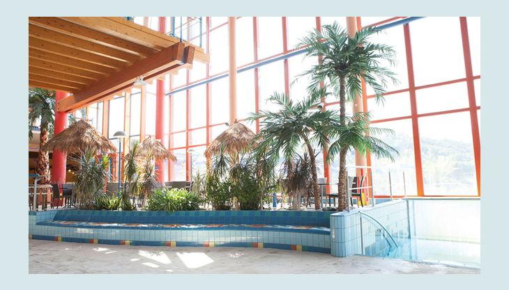 bg wonnemar sonthofen erlebnisbad innen botanik palmen
