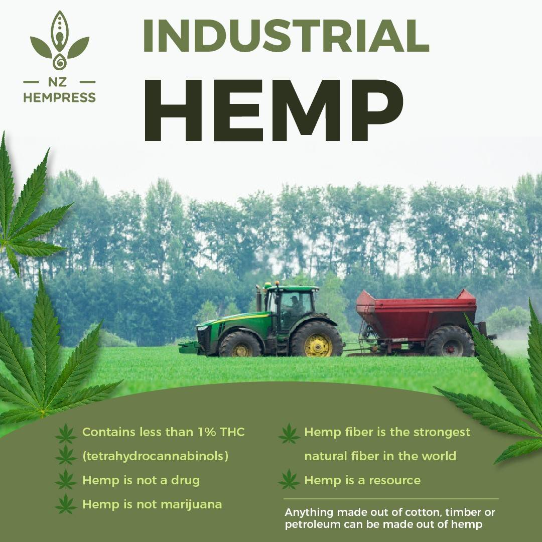 cbd hemp oil new zealand