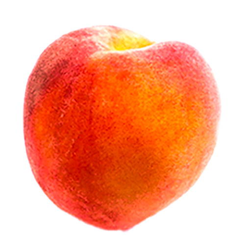 A peach that symbolizes hair fuzz