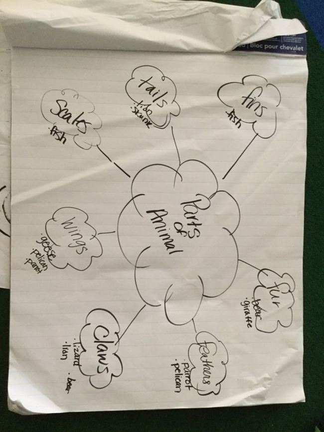 bubble map pre-k