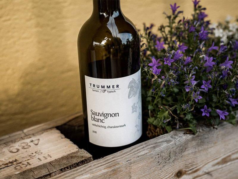 Weinflasche Weingut Trummer Sauvignon blanc – vielschichtig, charakterstark 2018