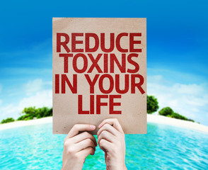 Environmental Toxins Have Become the Primary Drivers of Chronic Disease -