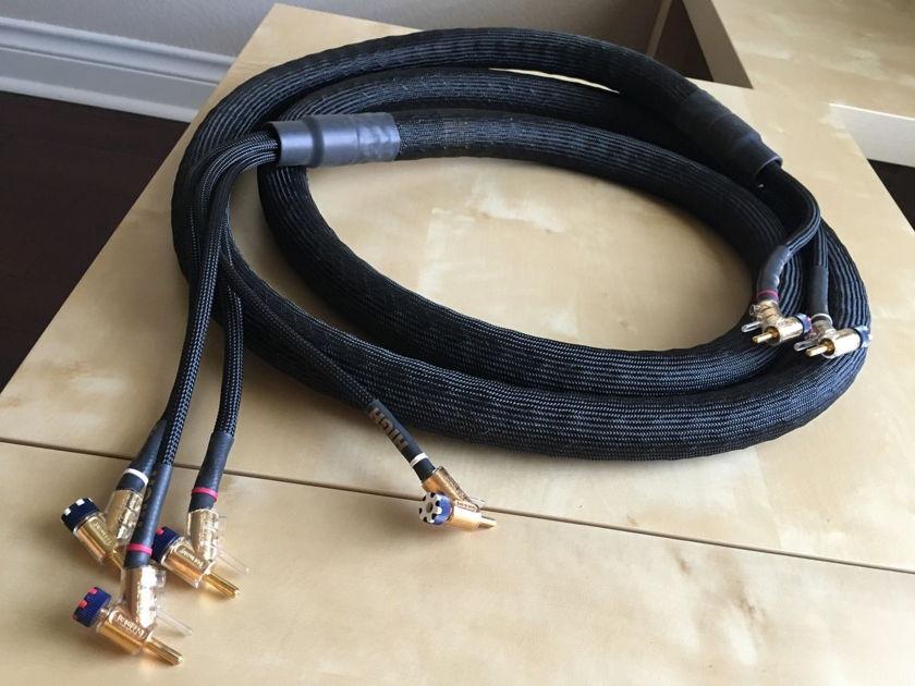 Kimber Kable Bifocal XL single cable (1) 10' WBT 0645