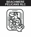 wynnum manly seasgulls rugby league emu sportswear ev2 club zone image custom team wear