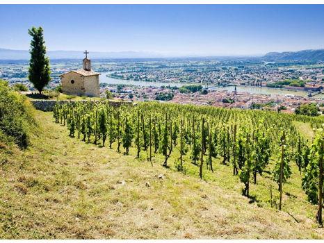 Burgundy & Lyon: Food & Wine Legends