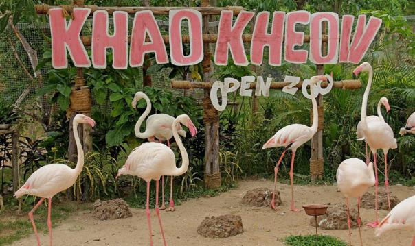 Поездка в Кхао Кхео