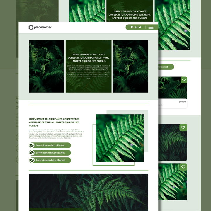 Fern template's featured image