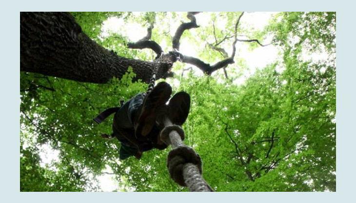 kletterwald freischütz kletterseil